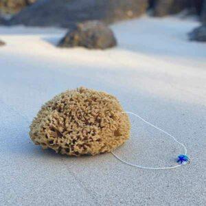 Naturschwamm mit Kordel und Anhänger liegt im Sand